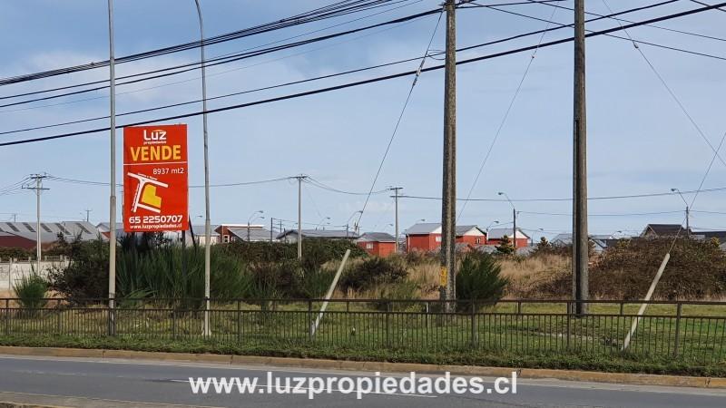 Senderos del Tepual, Lote D-2 - Luz Propiedades