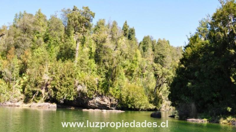 Campo Canal de Puyuhuapi - Luz Propiedades
